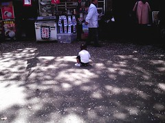 girl (*suika *) Tags: 女の子 背中 光と影 桜の花びら集め 上野東照宮前 春休み