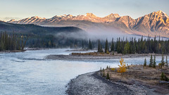 Athabasca Morning (Kirk Lougheed) Tags: alberta athabascariver canada canadian icefieldsparkway jasper jaspernationalpark autumn fall fog forest landscape outdoor river sky water