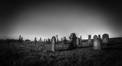Forgotten Graveyard (Durham George) Tags: grave stone yard graveyard gravestone monument mono blackandwhite hartlepool jewish jewishcemetery cemetery