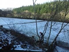 Deeside 030219_125350 (Leslie Platt) Tags: llangollenrailway deesidehalt deevalley vegetationclearance denbighshire exposureadjusted straightened