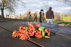 1/365 (Spannarama) Tags: 365 january flowers table sunshine people walking holdinghands newyearsday canarywharf greenwichpark blackheath london uk