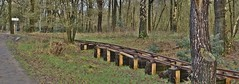 La France heeft 'le Viaduc de Millau' - wij blijven niet achter (...) (henkmulder887) Tags: holtingerveld holtinge natura2000 np drenthe zwdrenthe spoorlijn spoorbaan schaapskooi havelte bos uffelte