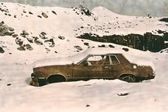 Lith, Abandoned Mustang (Lisa Burke Photography) Tags: lith lithprint oregon darkroom snow abandoned oldcars