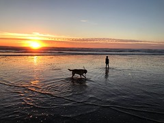 Child and dog at the beach (Out_of_the_Cauldron) Tags: barley gibson beach