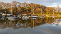 5 (Explore 14/04/19 #2) (andyrousephotography) Tags: caernarfon afonseiont gwynedd wales yachts boats reflections morning firstlight sunlight golden glow warmth trees winter leafless