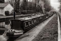 Fradley Junction, Staffordshire. (Jonathan Fletcher Photography) Tags: fradleyjunction jonathanfletcher staffordshire bowness boat canal fradley nikond750 28300 waterways water winter muckyduck publichouse pub kingfishernaturereserve marina
