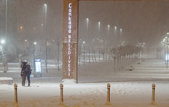 Snow lovers (listera_ovata) Tags: people street insan sokak love aşk olympusem5 zuiko olympusom50mmf14 streetphotography snow winter kış kar white