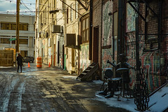 trumbell-6972 (FarFlungTravels) Tags: county northeast alley alleyway davegrohl ohio travel trumbell warren