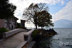 Lago di Garda (Biagio ( Ricordi )) Tags: cassone lagodigarda italy veneto verona ponte acqua lago lake alberi nuvole