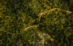 Road to Montsoriu (PepinAir) Tags: airphoto mavic pepinair flyphoto montsoriu photoair photodrone photolandscape road landscape riellsiviabrea catalunya españa es trees