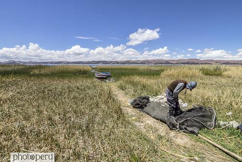 Puno, Titicaca
