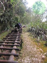 Putucusi, Provincia de Urubamba - Distrito de Machupicchu (Región Cusco / Perú) (jsg²) Tags: regióncusco provinciadeurubamba distritodemachupicchu vallesagradodelosincas perú américadelsur sudamérica suramérica postalesdelmusiú travel viajes fotosjsg2 johnnygomes fotografíasjohnnygomes jsg2 putucusi inca quechua