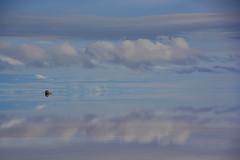 Salar d'Uyuni Bolivie/ Bolivia _4117 (ichauvel) Tags: salaruyuni uyuni bolivie bolivia ameriquedusud ameriquelatine southamerica voyage travel voiture 4x4 vehicule car gens reflet reflection ciel sky nuages clouds lac lake sel salt paysage landscape beautédelanature beautyofnature janvier january tranquilité serenity getty