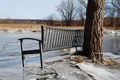 No Season For Sitting (fotofish64) Tags: winter ice riverice mohawkriver dunsbachferry saratogacounty frozenriver frozen bench parkbench cold capitaldistrict newyork halfmoon outdoor pentax pentaxart kp kmount da35mmf24 primelens pattern river park