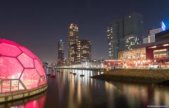 Rotterdam Rijnhaven op 16 Februari 2019