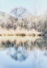 Esquisse (Charlottess) Tags: nikon5300 2019 février symétrie reflet saintebaume paca var
