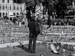 The photographer (michael_hamburg69) Tags: barcelona spain spanien barcelone barcelonés barcelonesa barcellona espagne españa spagna xībānyá katalonien catalonia cataluña plaçadecatalunya people monochrome streetphotography platz tauben doves dove pigeon pigeons plazadecataluña cataloniasquare