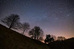 Nachthimmel am Weinfelder Maar (clemensgilles) Tags: stars starlight stargazing sternenhimmelsterne astrophotography astrophotographers astrofotographie longexposure bäume beautiful nacht nachthimmel nachtfotografie trees vulkaneifel deutschland eifel germany maar