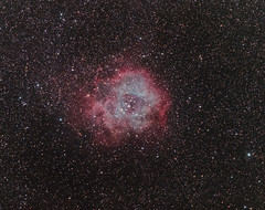 Rosette Nebula (Caldwell 49) (Constantine L.) Tags: rosette nebula dso deep space object astrophoto astrophotography startracking ioptron canon 7d 200mm emission hydrogen stars night cardwell 49 50 ngc 2244 long exposure