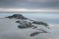 Soft light (Donard850) Tags: ardspeninsula ballywalter countydown irishsea northernireland beach rocks sea softlight sunrise