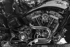 "Tribute_MotoMadrid_069-BN (byJMdF) Tags: artesania cordobesa artesanía custom bikes motorcycle moto motocicleta ""craftwork cordobese"" craftwork blancoynegro blackwhite salón motomadrid 2019 salónmotomadrid2019 harley davidson softail 1340 1995 harleydavidsonsoftail1340 harleydavidsonsoftail13401995 hdsoftail13401995 hd motomadrid2019"