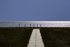 Hamburger Hallig (bhermann.hamburg) Tags: meer wasser ocean water minimal simple minimalistisch gegenlicht weg