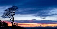 sunset, pine point, maine (jtr27) Tags: dscf3502xl jtr27 fuji fujifilm xe2s minolta md 28mm f28 mdiii sunset pinepoint maine manualfocus newengland