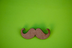 Moustache (Rushay) Tags: backgrounds copyspace representation green beard portelizabeth southafrica