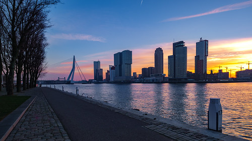 Good morning, Rotterdam, 20190119