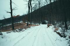 KRIS7601 (Chris.Heart) Tags: túra tél természet winter hiking forest pilis