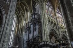 Mirando a lo alto (Paco Ferrándiz) Tags: gótico iglesia órgano vidriera gante ghant