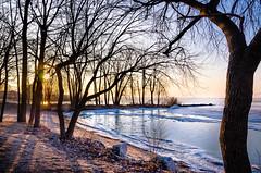 Good Morning Lakeside (Neil Cornwall) Tags: 2019 canada kingsville lakeerie lakesidepark march ontario ice lake sun sunrise trees water winter