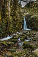 El Chorrón de Villamayor (Toño Escandón) Tags: agua cascada verde vegetacion bosque rio sedas piedra villamayor asturias españa toño escandon canon tamron nisi