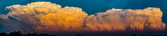 050212 - Nebraska Sunset Thunderheads 065 (Pano) (NebraskaSC Severe Weather Photography Videography) Tags: flickr nebraskasc dalekaminski nebraskascpixelscom wwwfacebookcomnebraskasc stormscape cloudscape landscape nebraska weather nature awesomenature storm clouds cloudsday cloudsofstorms cloudwatching stormcloud daysky weatherphotography photography photographic weatherspotter chase chasers newx wx weatherphotos weatherphoto day sky magicsky darksky darkskies darkclouds stormyday stormchasing stormchasers stormchase skywarn skytheme skychasers stormpics southcentralnebraska orage tormenta light vivid watching dramatic outdoor cloud colour amazing beautiful thunderheads stormviewlive svl svlwx svlmedia svlmediawx