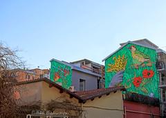 Murales a Roma (Michele Monteleone) Tags: monteleonemichele canon 5dmarkiii cielo albero strada tetto edificio street streetart lucamonte