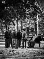 Parlez Corner, Nimes (bobbex) Tags: bw blackandwhite blackwhite streetphotography streetscene streetlife mono france french men oldmen