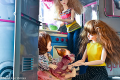 Family-Flickr.jpg (small_life_stories) Tags: 3dstorytelling aasta dollphotography doll photographicnovel graphicnovel bostonterrier dollsbe toyphotography toyadventure kitchen amy photonovel miniature critters family supia miniatureadventure miniaturephotography dolladventure teddybear sisters iplehouse pets onourown toy photostory bjd stuffedanimals ball joint balljointdoll