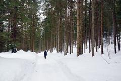 2019-02-10 Kufstein 053 Hintersteiner See