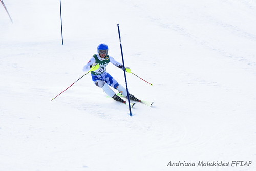 Alpine Races I & II Feb 2019_16