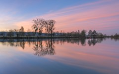 *Dawn at the river II* (Albert Wirtz @ Landscape and Nature Photography) Tags: mosel moseltal moselle river sunrise dawn morgendämmerung sonnenaufgang bluehour blauestunde trier quint ehrang hafen moselhafen nature natur natura landscape landschaft paesaggi paysage paisaje campo campagna campagne water reflection clouds goldenhour goldenestunde nikon d810 langzeitbelichtung longexposure moselsteig moselletrail radwegmosel moselradweg twilight tree sky wolke cloud filter haidagnd09softverlauffilter