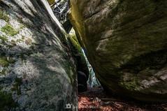 Paso estrecho (SantiMB.Photos) Tags: 2blog 2tumblr 2ig lesplanesdhostoles garrotxa girona otoño autumn roquesencantades bosque forest rocas rocks geo:lat=4205267991 geo:lon=250463316 geotagged santfeliudepallerols cataluna españa esp
