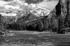 Canadian Rockies (Tasmanian58) Tags: nikon mountain rockies alberta canada banff river bow landscape bw nb monochrome noirblanc blackwhite snow trees beautiful