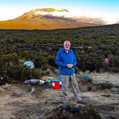 _FOU9498.jpg (Murray Foubister) Tags: 2018 gadventures spring mountainsm flora travel people treking africa tanazania