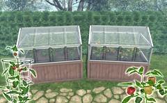 JIAN Mini Greenhouses // Tomato & Pepper (Belle. April '19) ([JIAN]) Tags: secondlife mesh gardening garden farm farming food greenhouse backyard jian vegetables plants