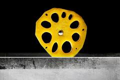 big wheel (1crzqbn) Tags: nelumbonucifera sliderssunday slice textures yellow metal reflections bokeh bigwheel ballbearing vegetable 1crzqbn