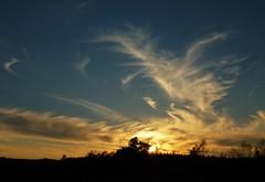 Saturday Night Cirrus Clouds..x (Lisa@Lethen) Tags: saturday night cirrus cloud formations weather nature scotland spring silhouettes