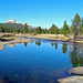 Yosemite Blues, Tuolumne Meadows 10-18