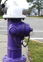 Mount Union Collge Campus Alliance, Ohio (Eat With Your Eyez) Tags: alliance ohio panasonic fz1000 fire hydrant mount union campus purple white college town chain paint painted fun beautiful department