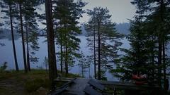 WP_20180622_19_01_34_Pro (www.ilkkajukarainen.fi) Tags: suomi finland finlande travel travelling visit happy life metsä puu puut kuusi mänty järvi lake sade raining gray day harmaa päivä
