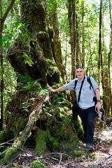 20190113-08-Hiking up Mt Wedge (Roger T Wong) Tags: 2019 australia mtwedge rogertwong sel24105g sony24105 sonya7iii sonyalpha7iii sonyfe24105mmf4goss sonyilce7m3 tasmania bushwalk forest hike outdoors southwest tramp trek walk